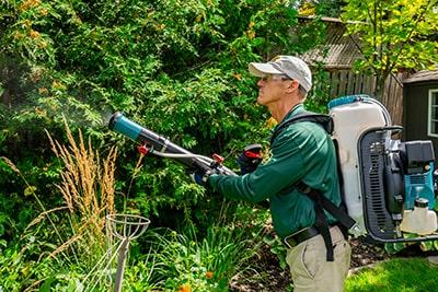 Mosquito Hero mosquito control treatments